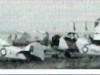fleet-16-finches